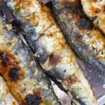 Sardines au Portugal