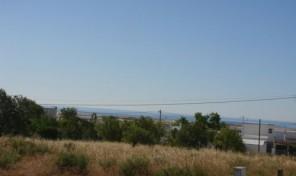Terrain de 7040m2 pour construire appartements et villas proche Fuzeta