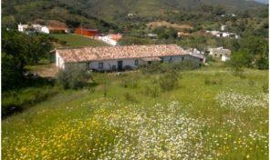 Ancienne Quinta avec dépendances, vues et grand terrain proche Tavira