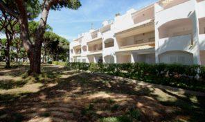 Appartement rénové T1 avec vue sur une pinède proche Albufeira